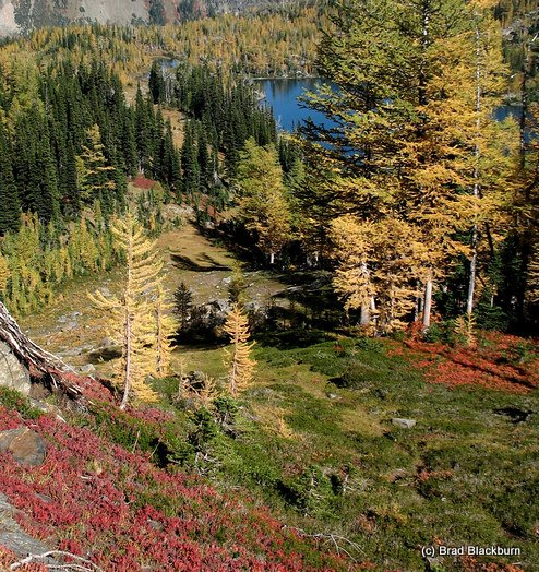 Photo by Brad Blackburn: lakes and autumn colors somewhere in the Chiwaukums.
