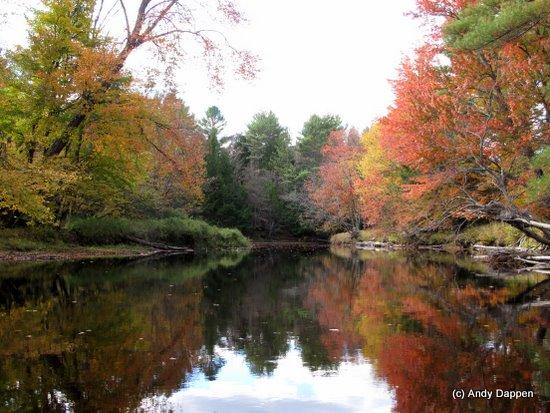 Canoeing scenery in New Hampshire.