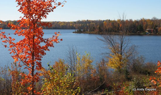 Lakes and autumn colors somewhere in Michigan.