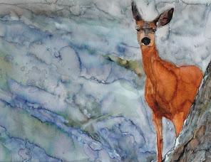 deer[1]