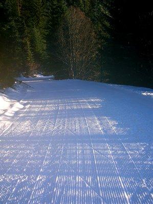 ASS-Skiing-3[1]