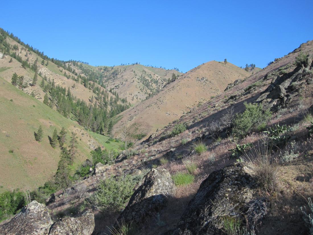 McKinstry Ridge
