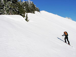 A backcountry skier accessing one of the peaks above the Smithbrook Road.