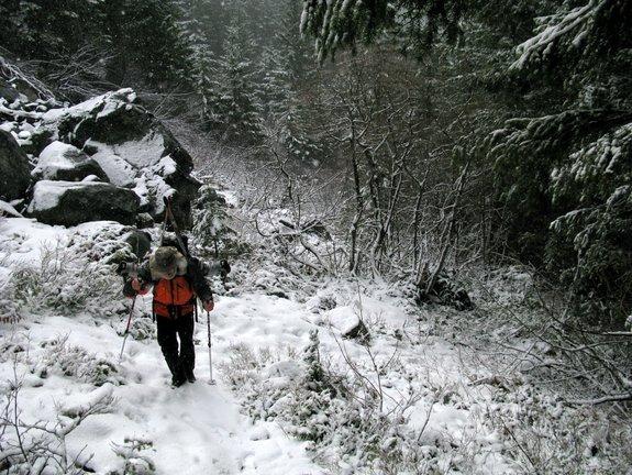 snowgrass3-29-15-0041