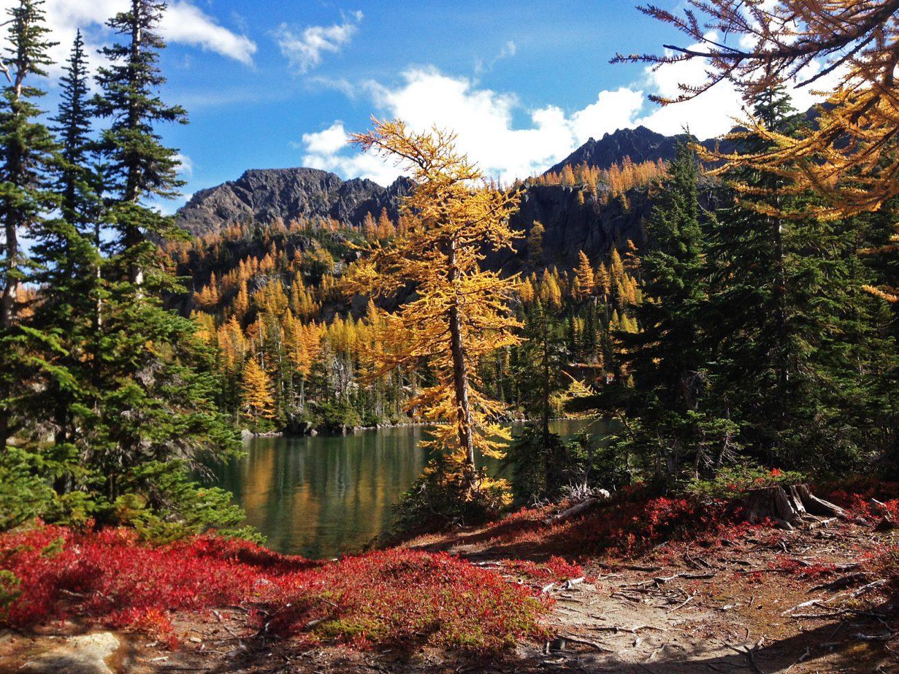 Larch Lake